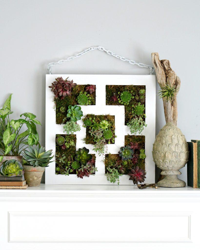 איקאה צמחים