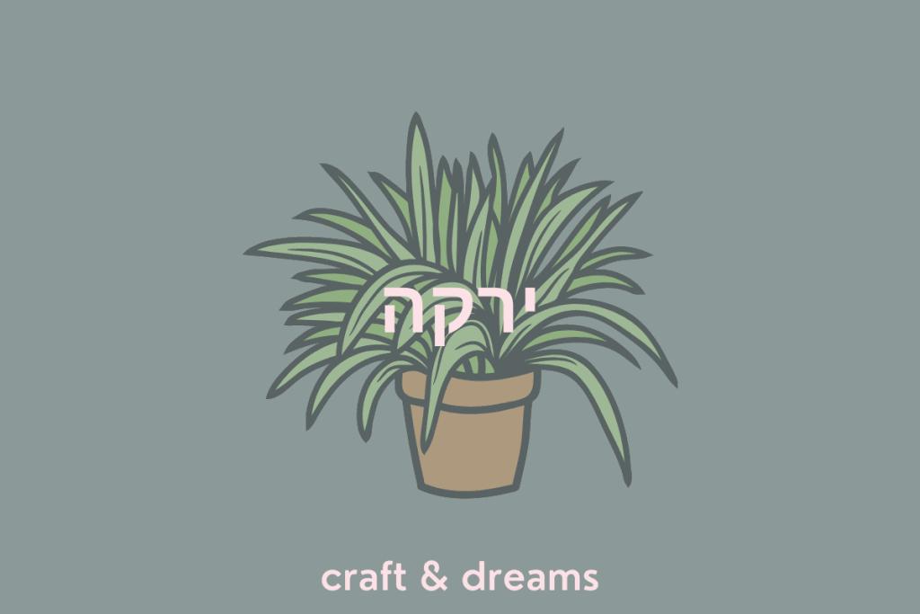 צמחים שאפשר להשריש